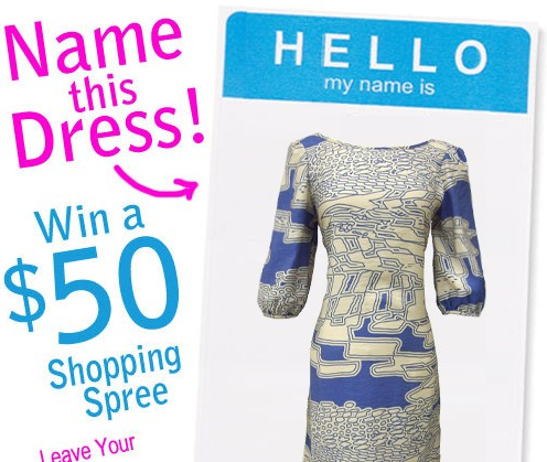 NameTheDress81