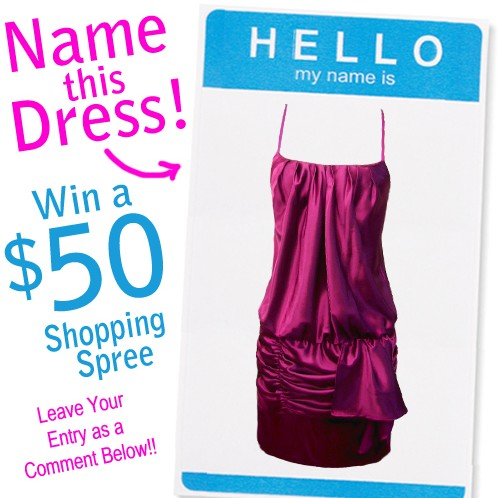 nameTHEDress13