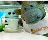 pg-tips-mr-shifter-co-site-300x211(1)