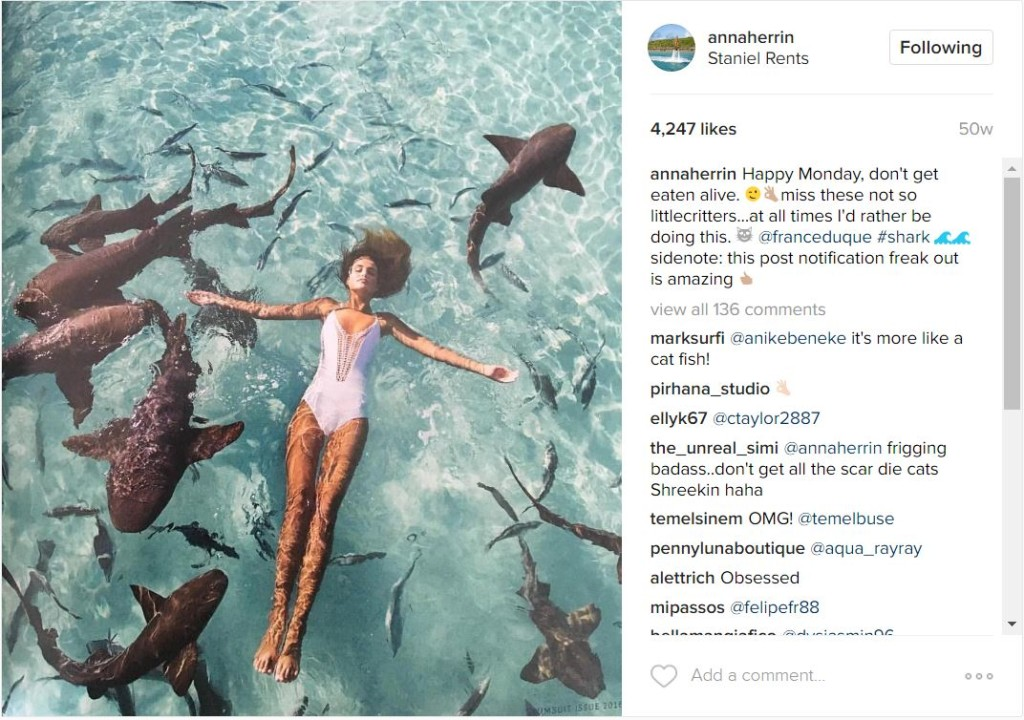 Model Moment: Anna Herrin swims with sharks