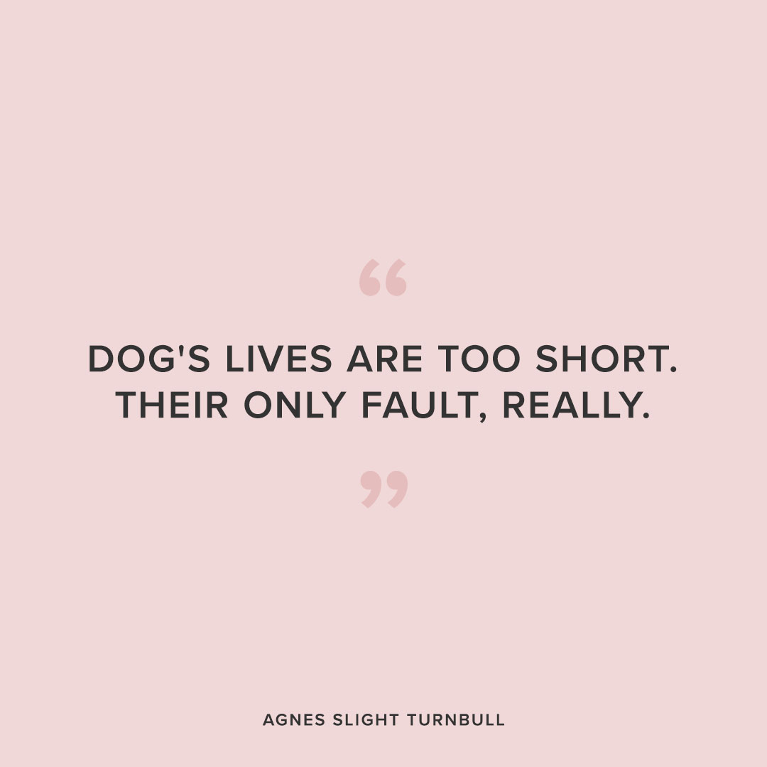 Cute Dog Quotes That Perfectly Describe How You Feel About ...