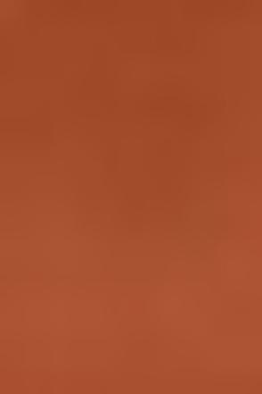 Foreign Film Cinnamon Brown Dress