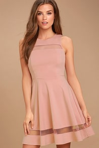 Sheer Determination Mauve Mesh Skater Dress