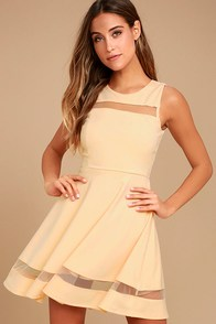 Sheer Determination Nude Mesh Skater Dress