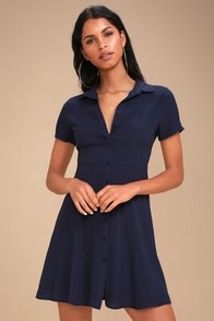 Daily Delight Navy Blue Collared Button-Up Skater Dress
