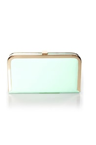 Blast from the Pastel Mint Green Clutch