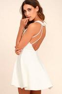 Delightful Surprise Ivory Skater Dress 1