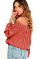 Festival Day Terra Cotta Lace Off-the-Shoulder Crop Top 3