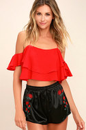 Rose Buds for Life Black Embroidered Satin Shorts 2