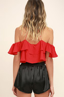 Rose Buds for Life Black Embroidered Satin Shorts 4