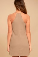 Endlessly Endearing Taupe Dress 4