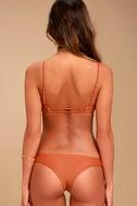 Amuse Society Ellea Terra Cotta Bikini Top 4