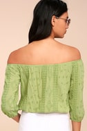 Jamboree Sage Green Embroidered Off-the-Shoulder Crop Top 3