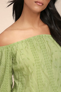 Jamboree Sage Green Embroidered Off-the-Shoulder Crop Top 4