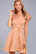 Black Swan Layla Blush Pink Satin Skater Dress 1