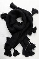 Northern Hemisphere Black Knit Scarf 1