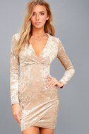 Tinseltown Silver and Beige Velvet Long Sleeve Bodycon Dress 6
