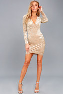 Tinseltown Silver and Beige Velvet Long Sleeve Bodycon Dress 5