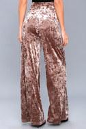 Corrinne Taupe Velvet Wide-Leg Pants 4
