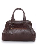 Ostrich and Famous Brown Handbag by Urban Expressions