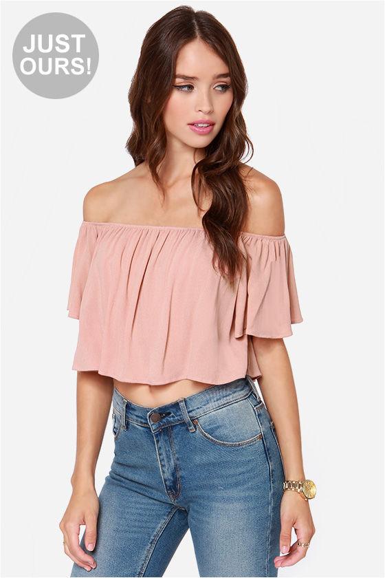 48a851fcb0fd3 Cute Crop Top - Blush Crop Top - Short Sleeve Top -  36.00