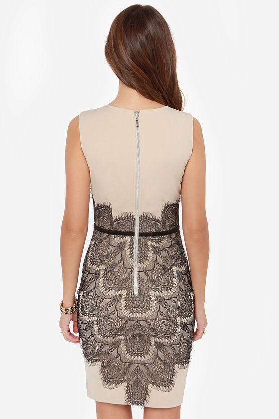 Little Mistress Don't Be Bashful Black and Beige Lace Dress at Lulus.com!
