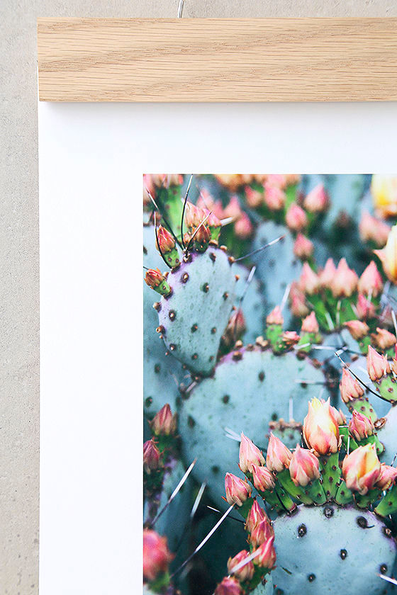 DENY Designs Prickly Pear Art Print and Hanger 2