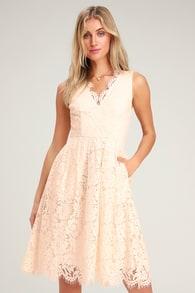 0301607a6d2 Cute Blush Pink Dress - Lace Dress - Skater Dress - Midi Dress