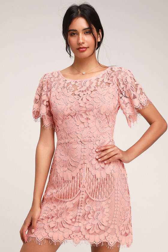 PEARSON BLUSH LACE SHORT SLEEVE DRESS