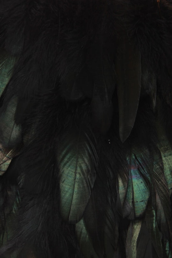 Blaque Label Raven Maven Black Feather Bolero